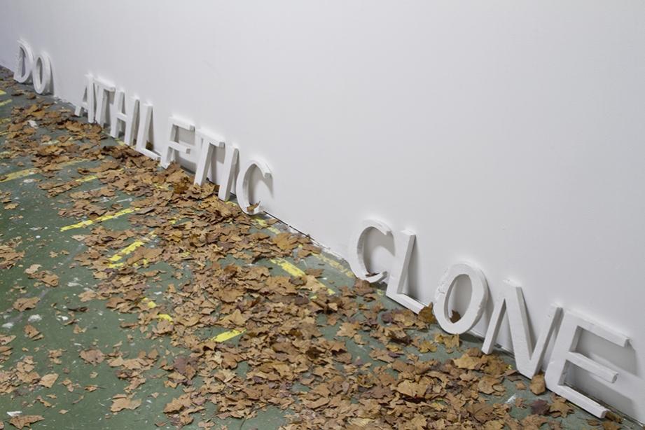 http://www.celinevache-olivieri.com/files/gimgs/th-98_98_tcd2.jpg